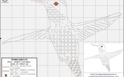 Схема вышивки колибри в